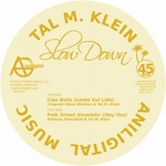 KLEIN, Tal M/ANTHONY MANSFIELD/IRREGULAR DISCO WORKERS - Slow Down EP (Front Cover)