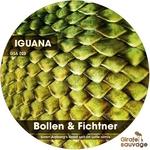 BOLLEN & FICHTNER - Iguana (Front Cover)