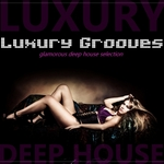 VARIOUS - Luxury Grooves (Front Cover)