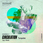 CIRCULATION - Turquoise (Front Cover)