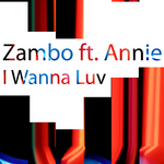ZAMBO feat ANNIE - I Wanna Luv (Front Cover)