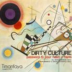 DIRTY CULTURE - Harm (Remixes Part 2) (Front Cover)