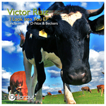RUIZ, Victor - I Look Into You (Front Cover)