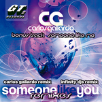 Someone Like You Remixes 2012