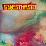 The Electric Nosehair Orchestra In Synesthasia
