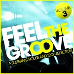 VARIOUS - Feel The Groove, Vol. 3 (A Blistering House & Tech Selection) (Front Cover)