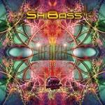 SHIBASS vs DAPANJI - Oforia (Front Cover)