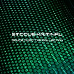 SMOOVE KRIMINAL - Dance Music: The Collection (Front Cover)