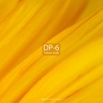 DP 6 - Yellow Code (Front Cover)