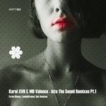 Into The Sound (Remixes) Pt.1