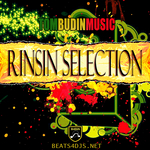 TOM BUDIN feat RINSIN SELECTION - Rinsin Selection (Front Cover)