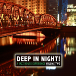 VARIOUS - Deep In The Night!, Vol.2 - A Jazz House Experience (Front Cover)