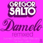 SALTO, Gregor - Damelo (remixed) (Front Cover)