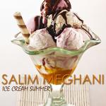 SALIM MEGHANI - Ice Cream Summer (Front Cover)