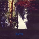 DNTEL - Aimlessness (Front Cover)