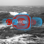 AMOSS - Tripped (Front Cover)