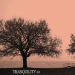 VARIOUS - Tranquility 005 (Front Cover)