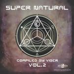 VARIOUS - Super Natural Vol 2 (Front Cover)