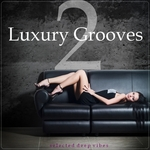 VARIOUS - Luxury Grooves Vol 2 (Front Cover)