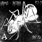 VARIOUS - ANT2RMX Remixes (Front Cover)