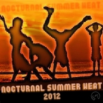 VARIOUS - Nocturnal Summer Heat 2012 (Front Cover)