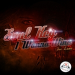 SOUL KEY feat LUNA - I Wanna Wine (Front Cover)