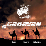FLOSSY/UNCLE YO/HALLUCIGEN - Vol 9 Caravan (Back Cover)