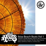 PARSONS, Paul/VARIOUS - Ibiza Beach Beats Vol 1 (mixed by Paul Parsons) (unmixed tracks) (Front Cover)