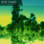 YILMAZ, Sefik - Try The Right Thing (Front Cover)