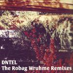 DNTEL - The Robag Wruhme (remixes) (Front Cover)