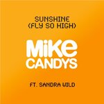 Sunshine (Fly So High) (remixes)