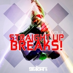 VARIOUS - Straight Up Breaks! Vol 3 (Front Cover)