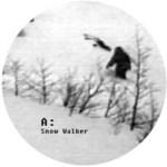 MARK E - Snow Walker (Front Cover)