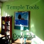 Temple Tools (Tribal Techhouse Tune)