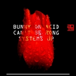 BUNNY ON ACID - Can't Be Rong (Front Cover)