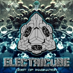 ELECTRICUBE - Cost Of Imagination (Front Cover)