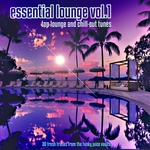VARIOUS - Essential Lounge Vol 1 (Top Lounge & Chillout Tunes 30 Fresh Tracks From The Funky Juice Vaults) (Front Cover)