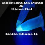 DA PINTO, Robrecht/STEVE GEL - Gotta Shake It (Front Cover)