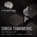 TAMAMOVIC, Sinisa - The Miracle EP (Front Cover)