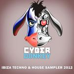 VARIOUS - Ibiza Techno & House Sampler 2012 (Front Cover)