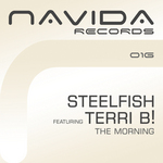 STEELFISH feat TERRI B - The Morning (Front Cover)