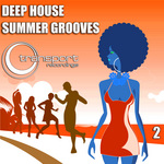 VARIOUS - Deep Summer Grooves Vol 2 (Front Cover)