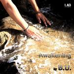 BU - Awakening (Front Cover)