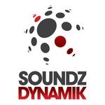 SOUNDZ DYNAMIK ALL STARZ - Movin' & Shakin' EP Vol 1 (Front Cover)