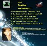 RESCUEPOETIX - Destiny (Front Cover)