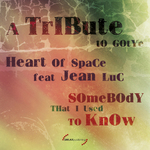 HEART OF SPACE FEAT JEAN LUC (TRIBUTE TO GOTYE) - Somebody That I Used To Know (Front Cover)