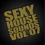 VARIOUS - Sexy House Sounds Vol 7 (Front Cover)