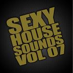 Sexy House Sounds Vol 7