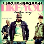 BARBOSA, Carlos feat QBAH/STACEY GRAY - Like You (The remixes) (Front Cover)