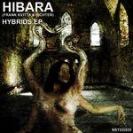HIBARA (FRANK KVITTA & RICHTER) - Hybrids - EP (Front Cover)